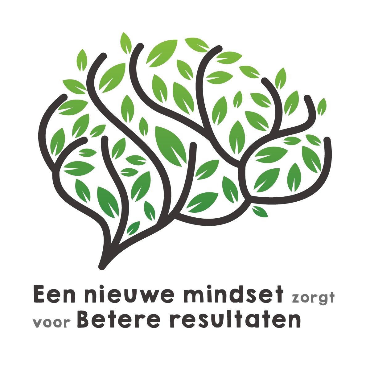 mindset results brain hoofd resultaten gezondheid