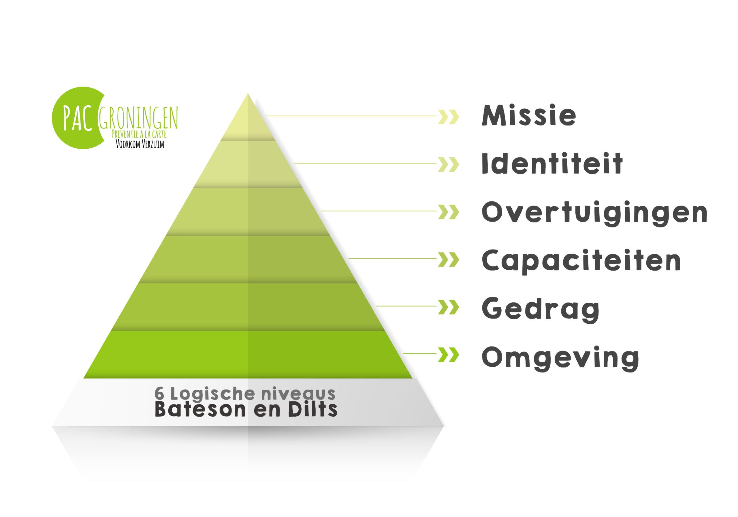 Bateson en Dilts nederlands